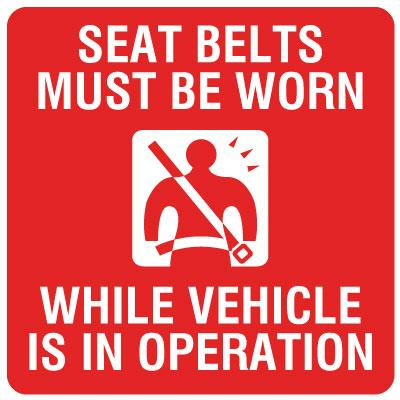 Seat Belts Must Be Worn Vehicle Label