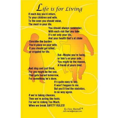"Poem - ""Life is for Living"""
