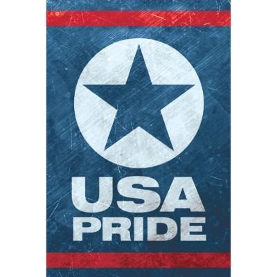 USA Pride Hard Hat Sticker